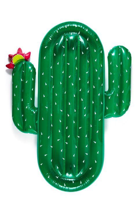 cactus pool float